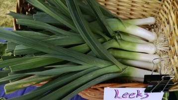leeks from Penny Lane