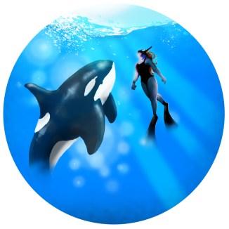 FFRINGED-galerie-underwater