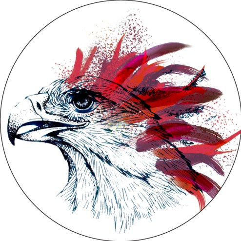 eagle-ink-drawing