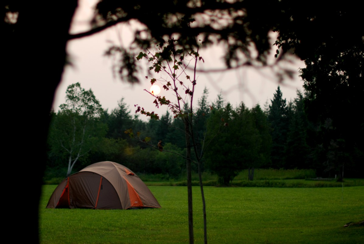 Summer outdoor camping, in the nature