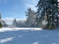 2017-winter-photo-14