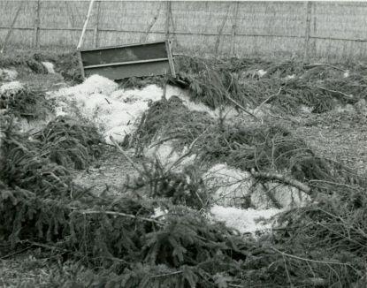 Blick hinter den Zaun: Reisig, Teerpappe und andere brennbare Materialien wurden entzündet um Brände vorzutäuschen. Foto: NARA