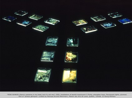 """MIND BUNKER (there's someone in my head, but it's not me)"" 2000, Installation of backlit translucent C-Prints, plexiglass trays, flourescent lights, plywood. Part of ""photos géniques"" curated by Monique Brunet-Weinmann; Maison des Arts de Laval, Québec"