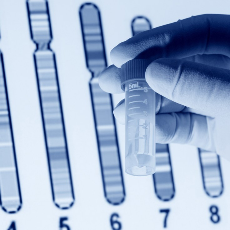 Chromosome mapping during DNA testing.