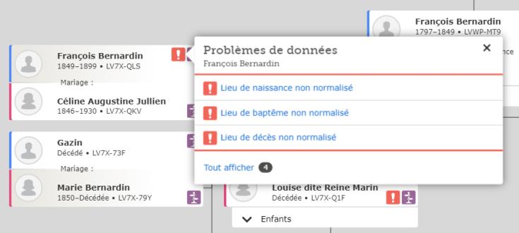 Problèmes de données FamilySearch tels qu'ils apparaissent dans la vue de l'arbre