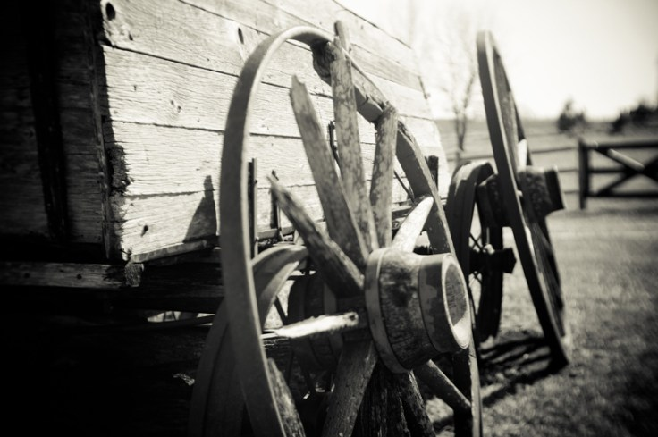 Pioneers and Native Americans both faced trials and changes during the American Westward Expansion.