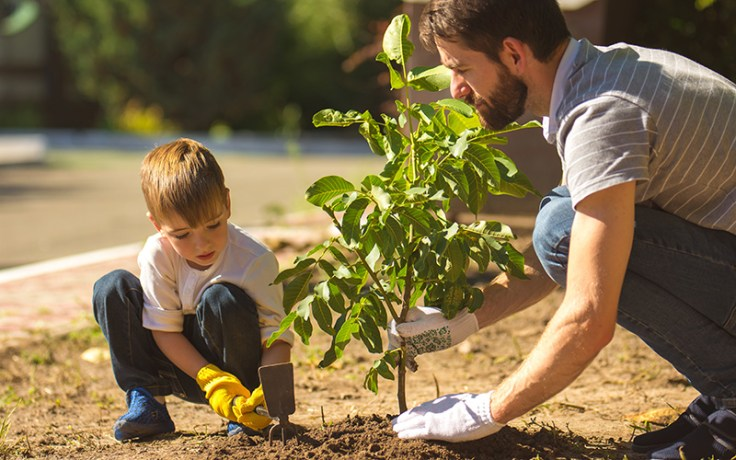 Father and son planting a tree to remember a loved one.