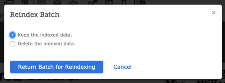 Screenshot of reindexing batch option