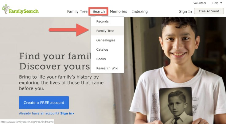 Screenshot showing the Search Family Tree option on FamilySearch.org.