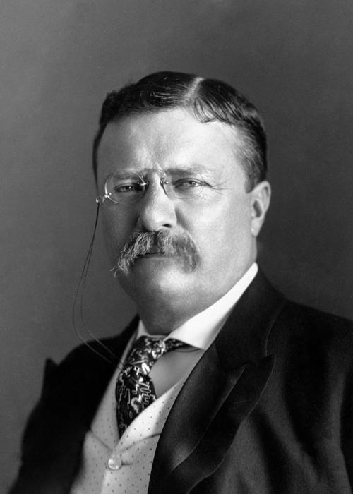 Portrait of President Theodore Roosevelt Jr.