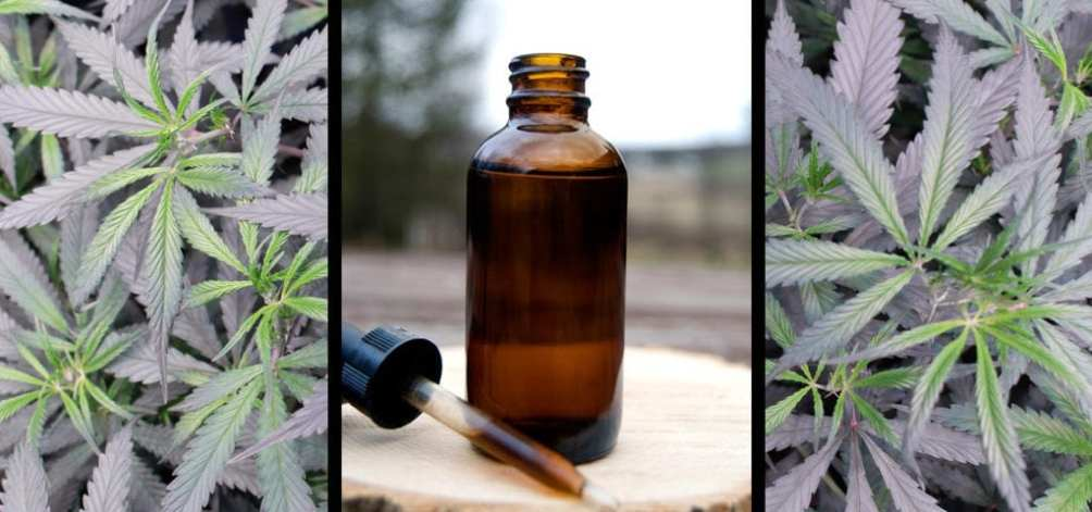 Medical cannabis laws in Georgia are so unfriendly to patients that they must rely on cannabis oil products sourced from out-of-state producers.