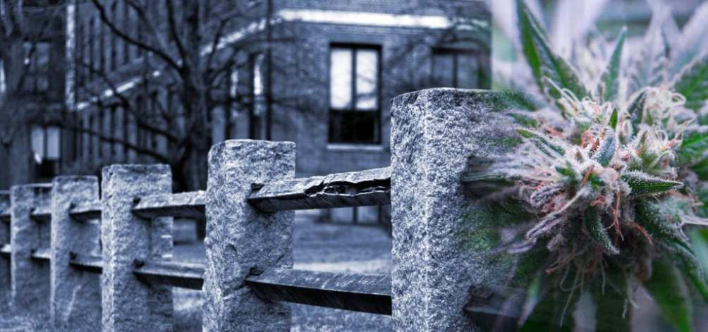 A stone fence on a grey day in Cambridge, Massachusetts.
