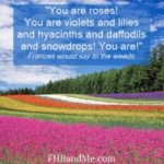 You are roses
