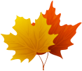 Fall_Maple_Leaves_PNG_Decorative_Clipart_Image.png
