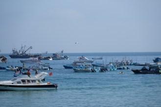 Puerto López - Boote im Hafen