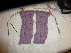 P1000504 purple socks update