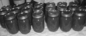 P1020242 salsa