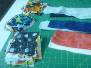 P1020317 I spy fbrics