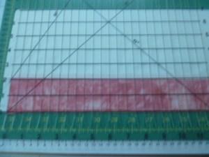 P1020339 ruler