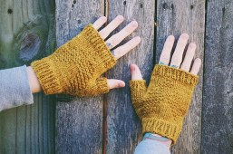 North Country Mitts, © Andrea Mowry