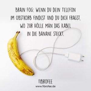 """Vor einem weißen Hintergrund ist eine Banane zu sehen, in der ein Handyladekabel steckt. Darüber steht das Zitat: """"Brain Fog: Wenn du dein Telefon im Obstkorb findest und du dich fragst, wo zur Hölle man das Kabel in die Banane steckt."""""""