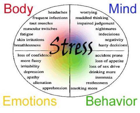 stressed-desserts-body-mind