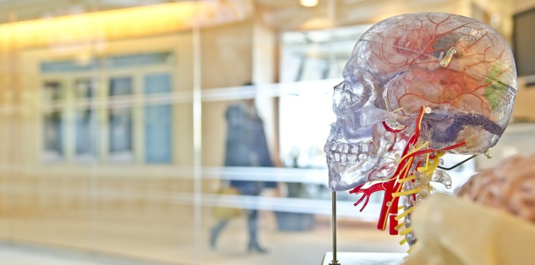 Fibromyalgia: Non-pharmacological and Novel therapies