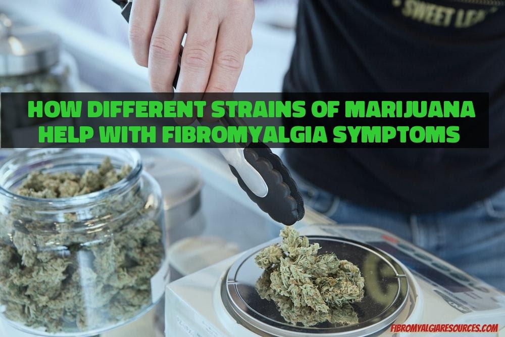 How Different Strains of Marijuana Help with Fibromyalgia Symptoms