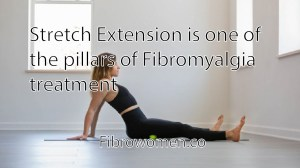 Read more about the article Stretch/Extension is one of the pillars of Fibromyalgia treatment