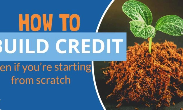 How to Build Credit? – Learn the Basics Bow to Build Credit