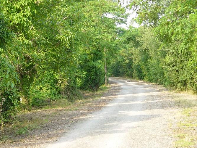 parcours velo route voie verte le