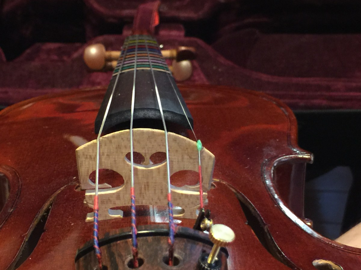 Fiddle talk - VIOLIN DISCUSSION FORUM - Playing the violin ...