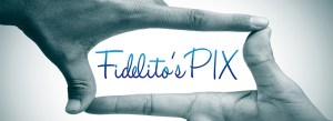 Fidelito'sPIX-webpage content-Cover