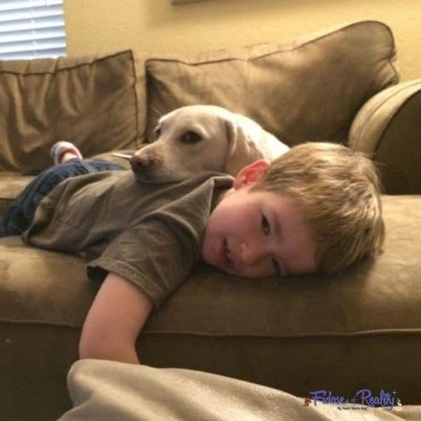 teaching respect for dogs to kids