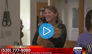 Thousands of Cats Still Displaced from Camp Fire