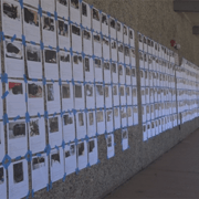 Hundreds of Flyers of Unclaimed Cats from Camp Fire at Ponderosa Elementary School
