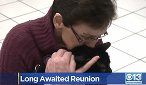 Family Reunites With Cat Lost In Camp Fire, Flies Rescuer To Missouri For Reunion