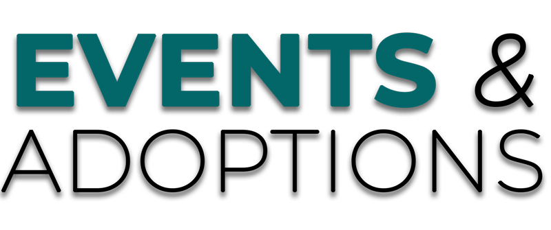 Events and Adoptions