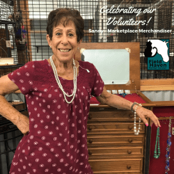 FieldHaven Volunteer Sandy at Marketplace, standing besides jewelry and furniture.