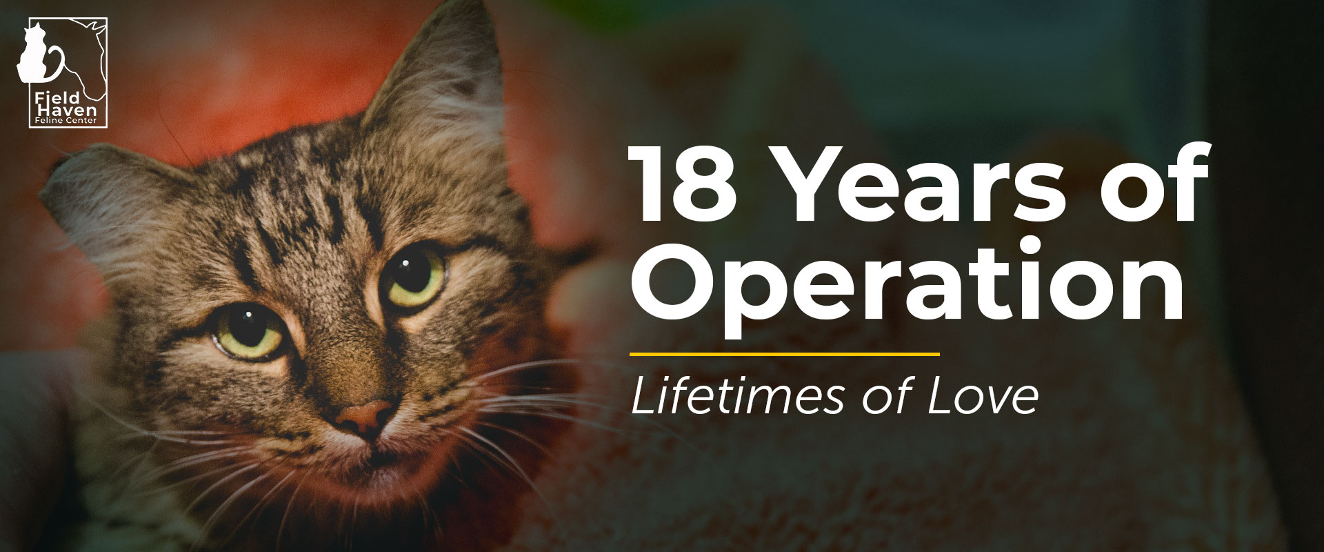18 Years of Operation, Lifetimes of Love
