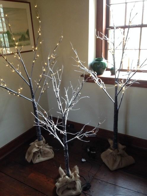 Decorative birch trees.