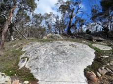 Rock sheet at Flagstaff Hill