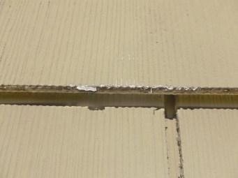 Fluffy, Cottony/silky substance on the edge of a shingle