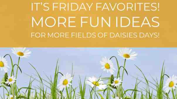 Fields of Daisies Days