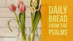 Praying Psalms 2-3