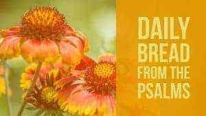 Praying Psalm 13