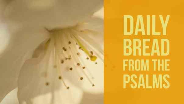 Praying the Psalms Psalm 15
