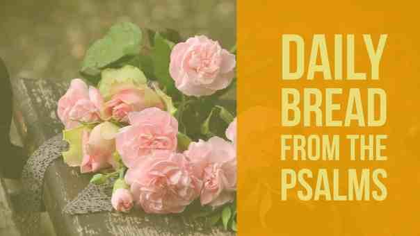 praying psalm 17
