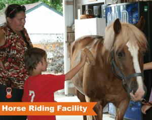 horse-facility