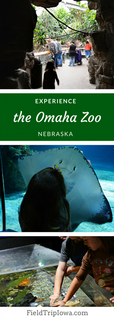 Omaha's Henry Doorly Zoo and Aquarium – Nebraska